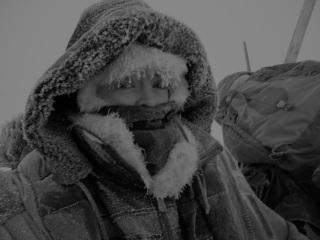Greenland dogsled journey