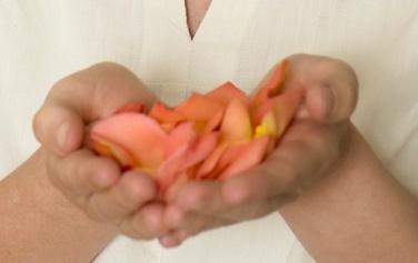 Rose Petals.jpeg